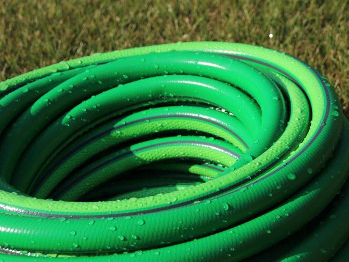 Use garden hoses to scare birds