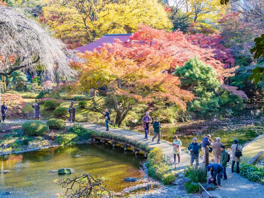 Koishikawa Korakuen Garden in Tokyo