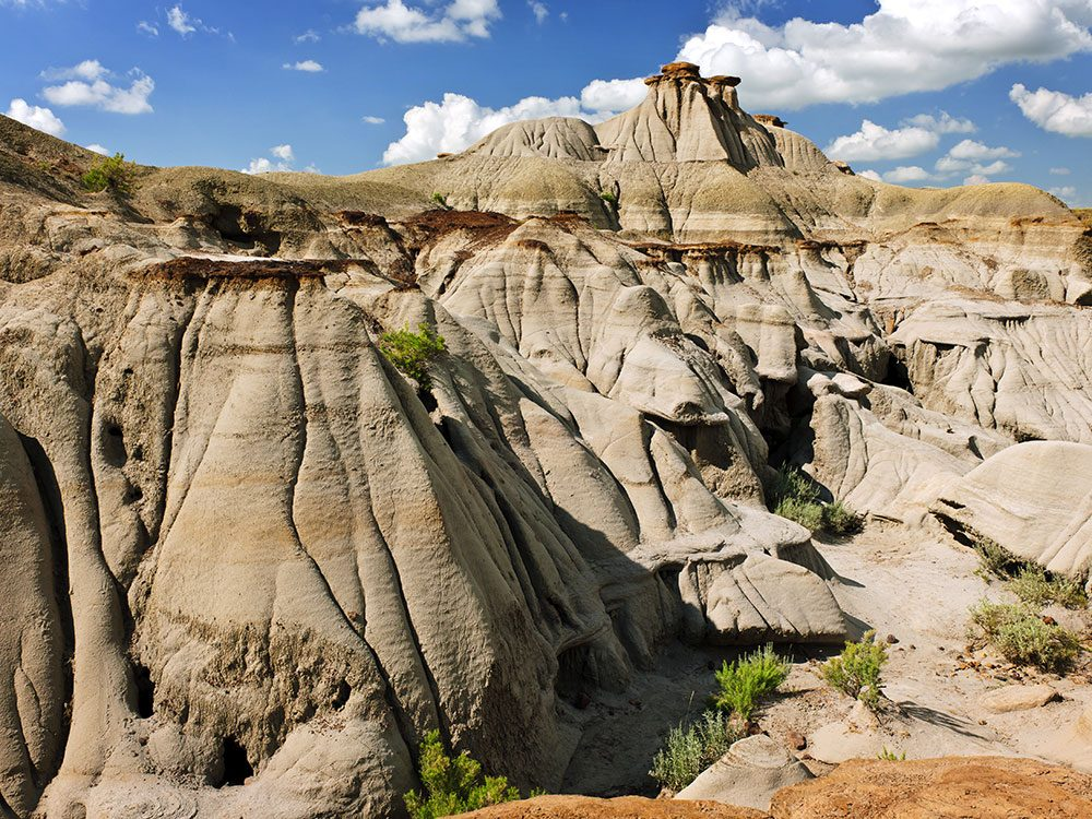 Dinosaur Provincial Park in Alberta is one of Canada's natural wonders