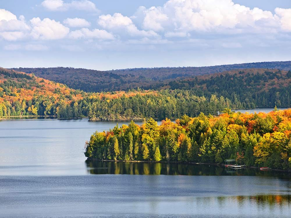 Fun facts about Canada - Autumn trees in Algonquin National Park