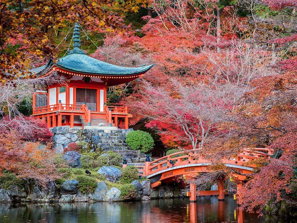 Springtime garden in Kyoto, Japan