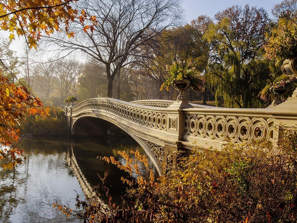Bridge in Central Park, New York