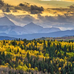 Fall colours at Banff National Park in Alberta