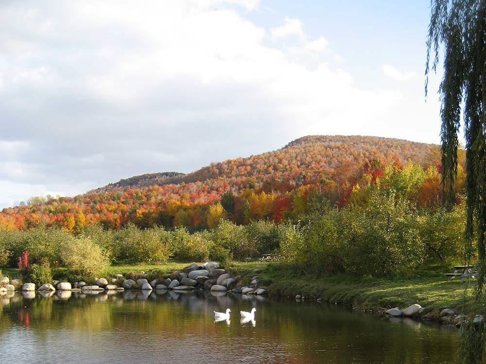 Verger du Franc Nord in Quebec
