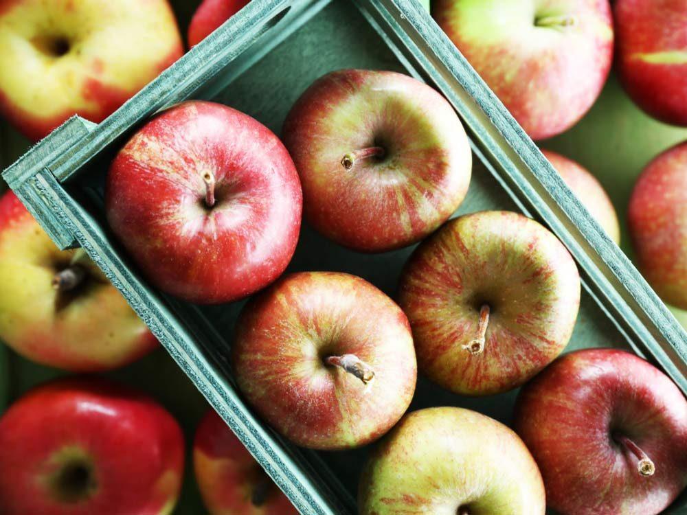 Apple picking spots