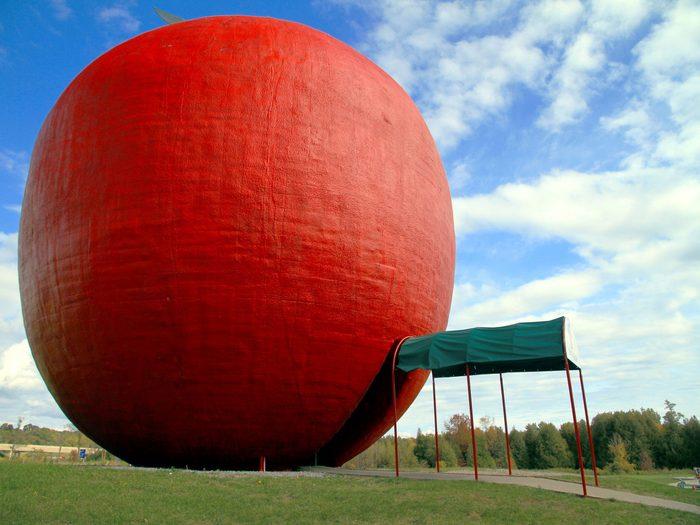 Giant apple in field