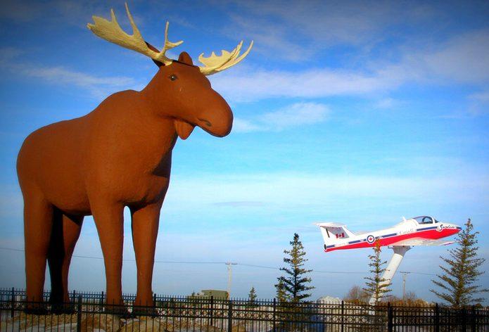 Giant moose statue