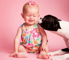Pets Bonding with Babies