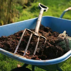 8. Apply Some Fertilizer