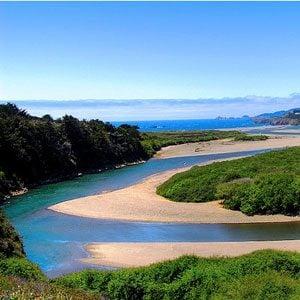 Amazing California: 2. Catch a Big One in Gualala River