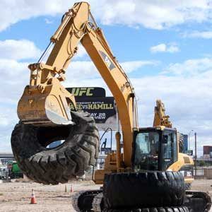 2. Dig This, Las Vegas