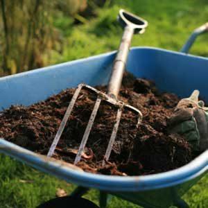 7. Prepare Soil Before Planting