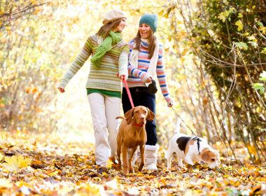 Health benefits of owning a pet #3: Keeping you socially connected