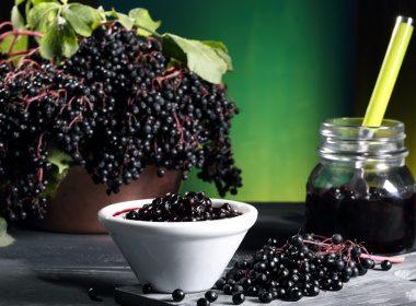 6. Elderberry and Elderflower