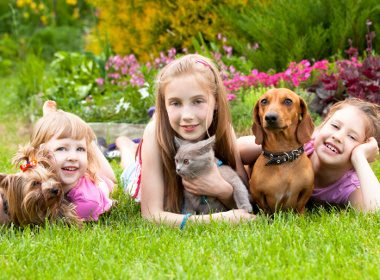 Medical benefits of pet ownership #5: Pets provide other health benefits