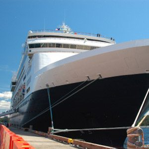 9. Check the Cruise Ship Schedules