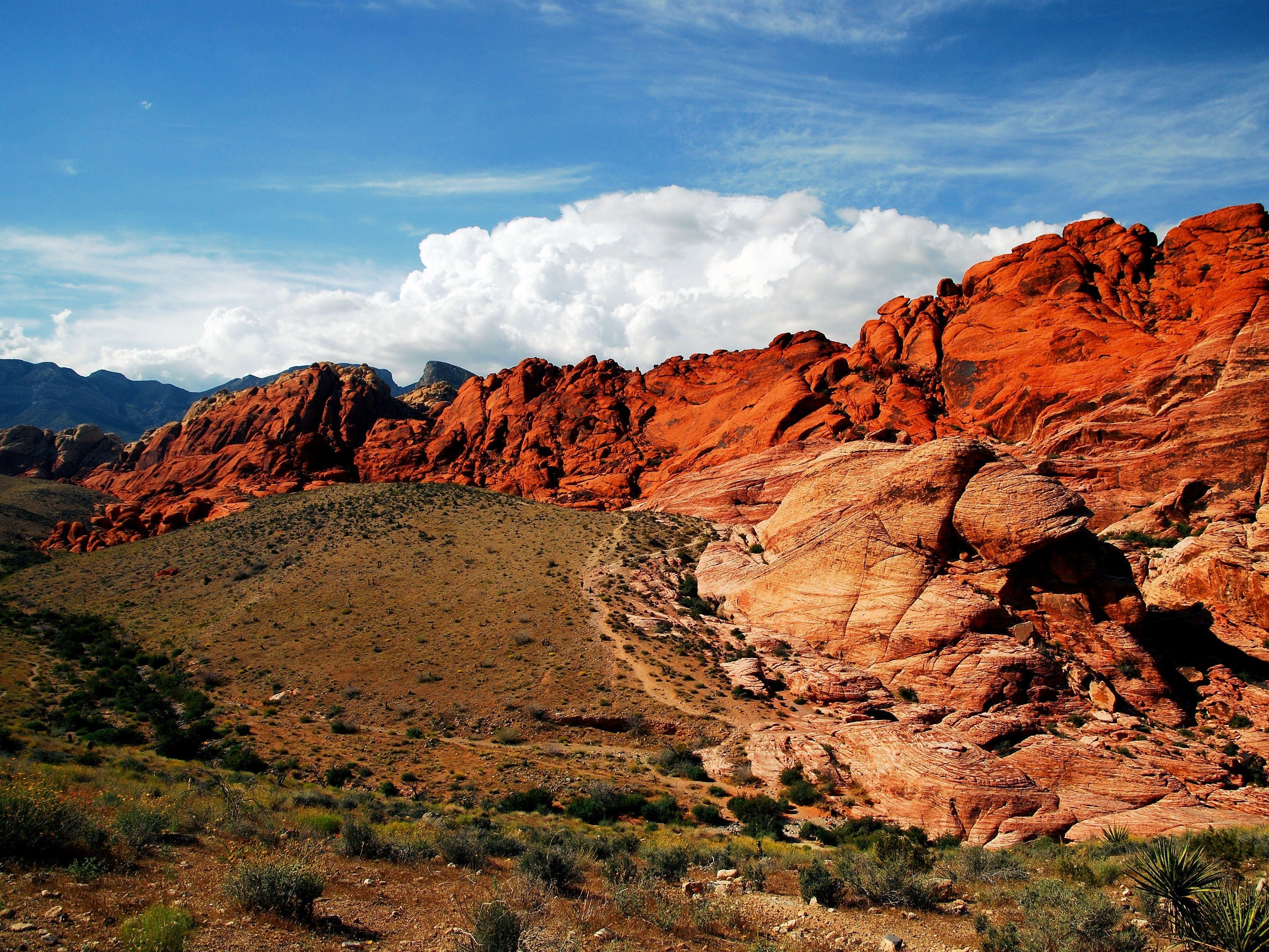 10 Amazing Reasons to Visit Las Vegas: Red Rock Canyon