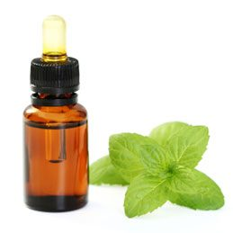 Eliminating Fatigue: How to Make Good Use of Essential Oils