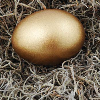 Your 30s: Nurturing Your Nest Egg