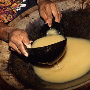 The Remedy: Kava