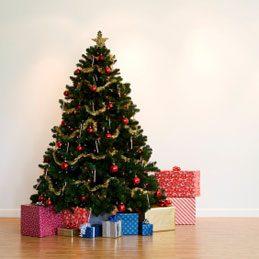 3. Make a Christmas Tree Stand