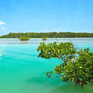 5. The Caribbean, Mexico and Florida