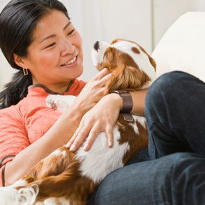 3. Play With Pets