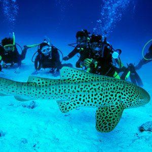 4. For Sun, Sea and Socializing: Phuket, Thailand