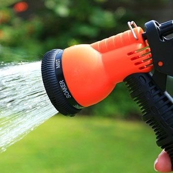 4. Watering