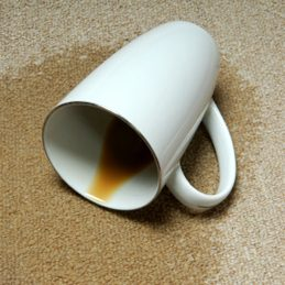 5. Remove Stains from Carpet, Clothing and Upholstery