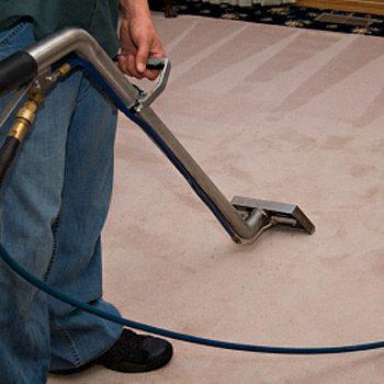5. Carpet and Upholstery Shampoo