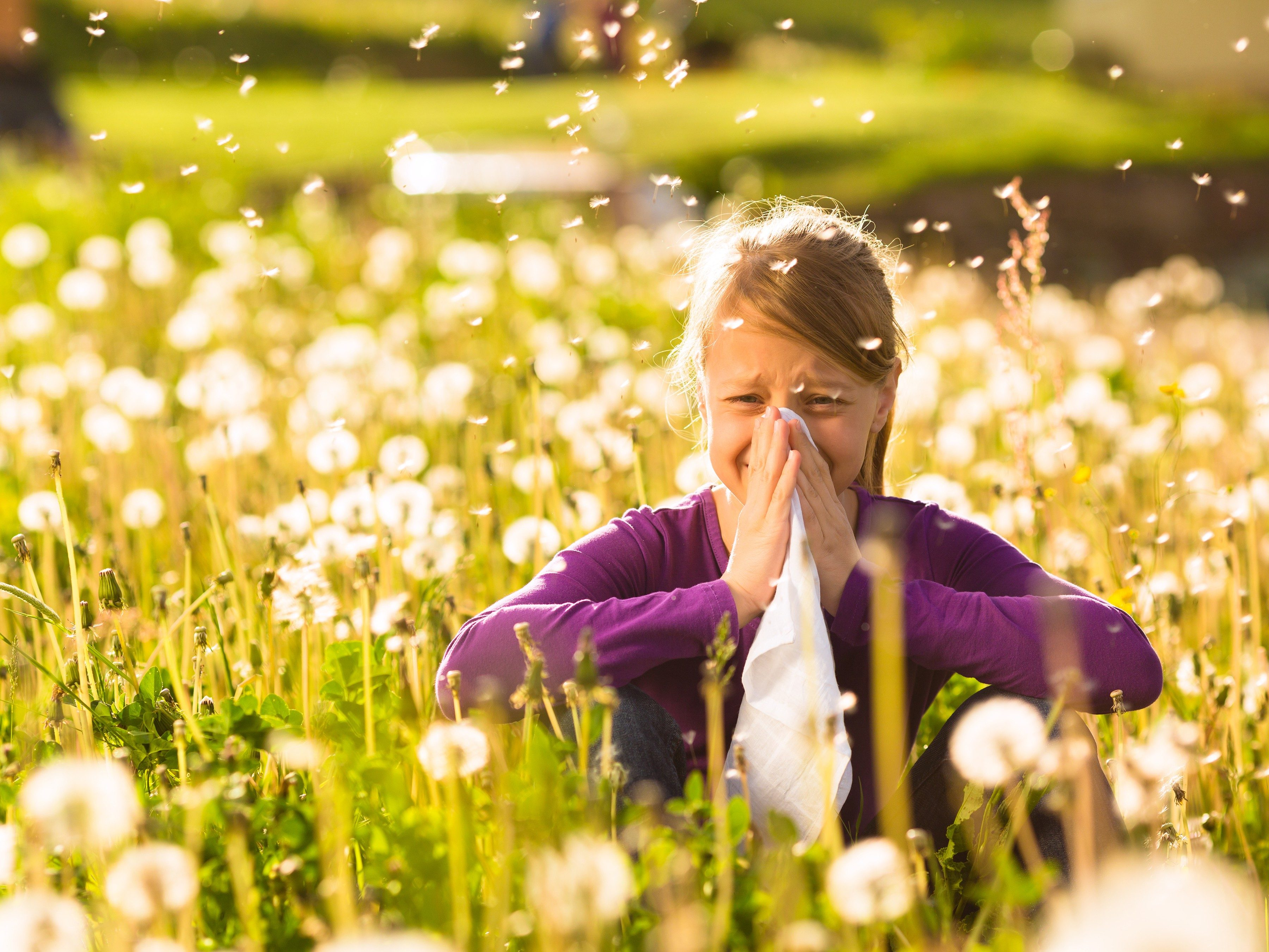 Easy relief from hay fever symptoms