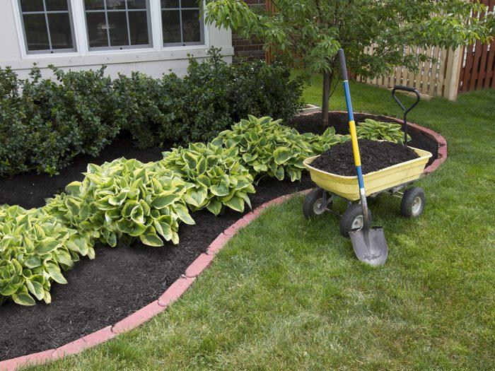 9. Add Fresh Mulch to Your Garden