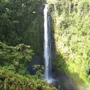 8. 'Akaka Falls State Park