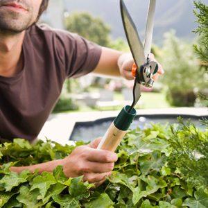 5. Garden Carefully