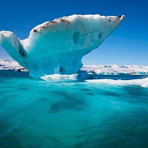 2. The Arctic