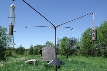 Bird Netting Station