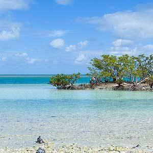 Reasons to Visit Florida: Biscayne National Park
