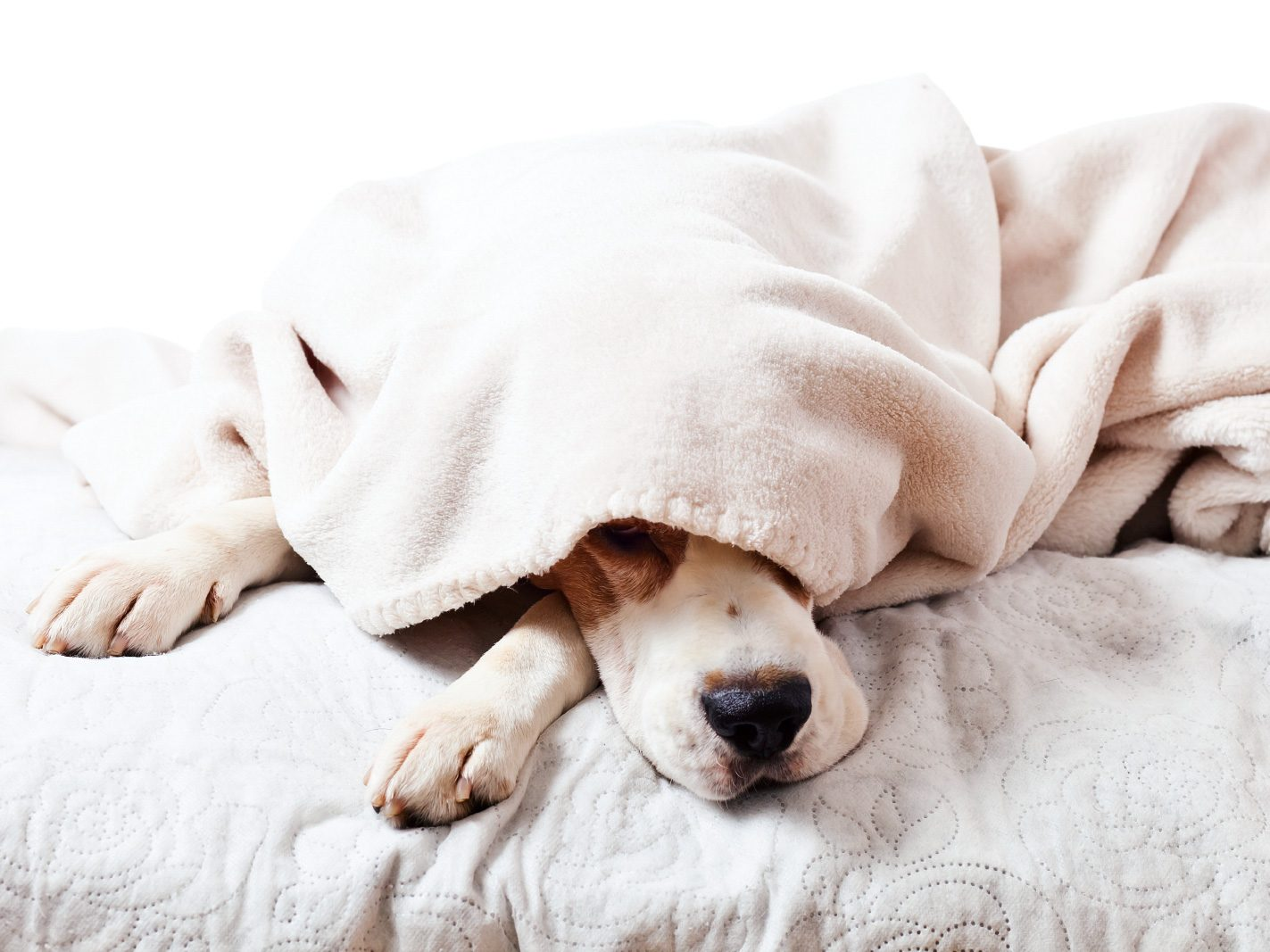 Fact or Fiction: Sleeping in Air-Conditioning Can Give You a Chill