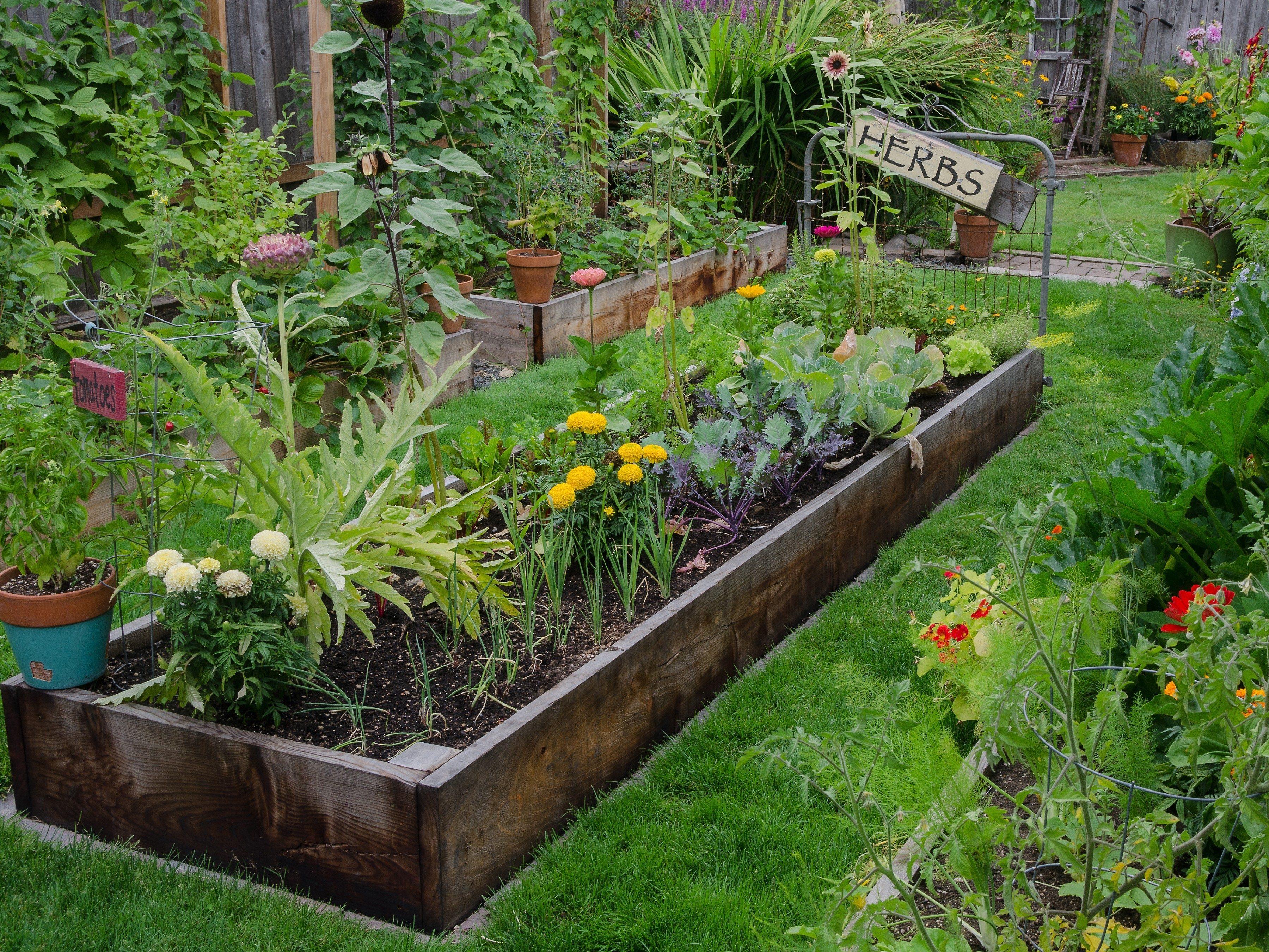Make Gardening Easier on Yourself