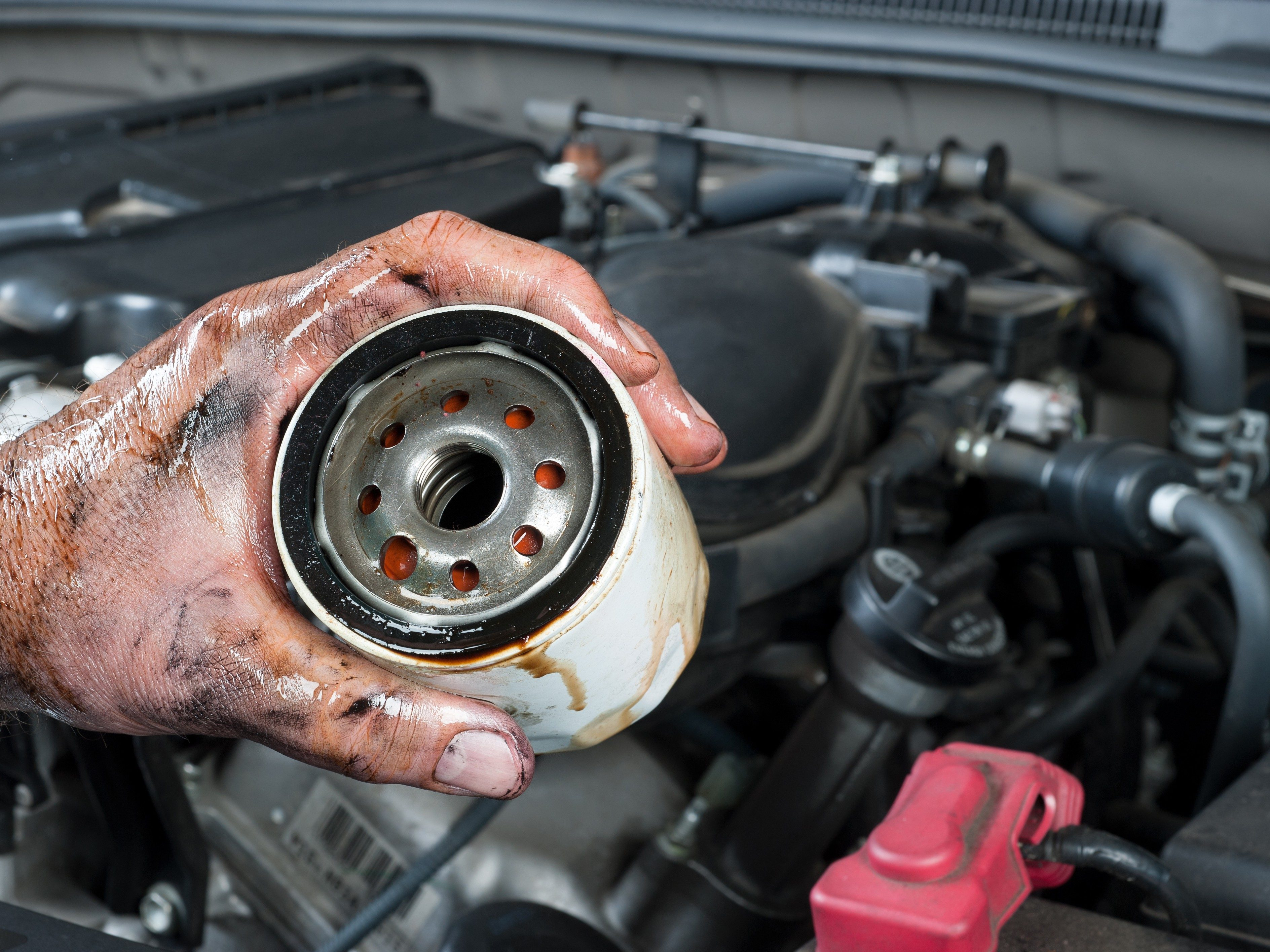 Buy a good filter for synthetic oil