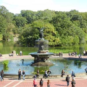 Cost-Conscious New York Tourist Stops: Central Park
