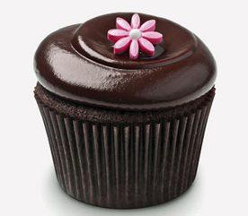 Cupcake Personality: Chocolate Squared