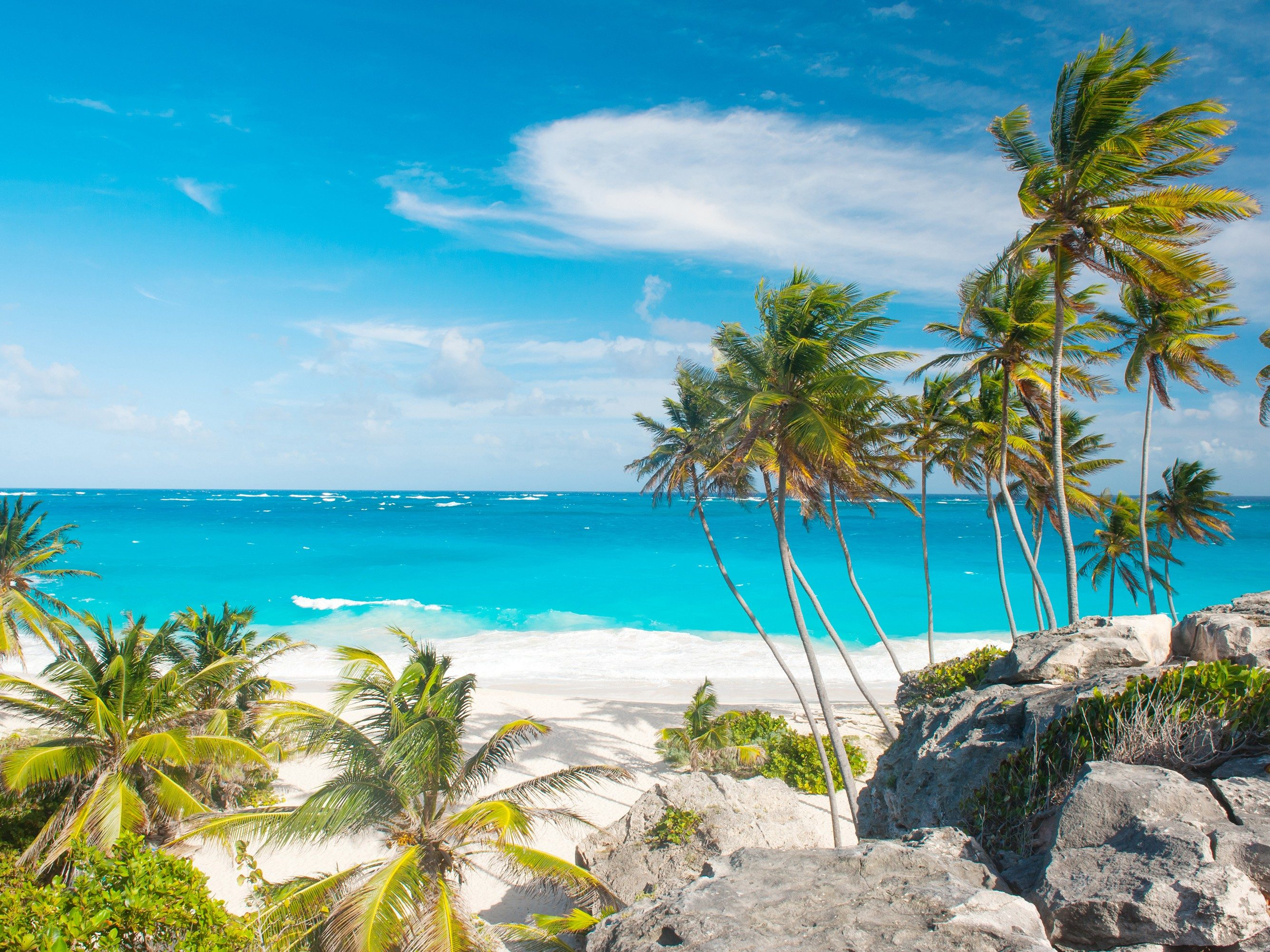6. Barbados