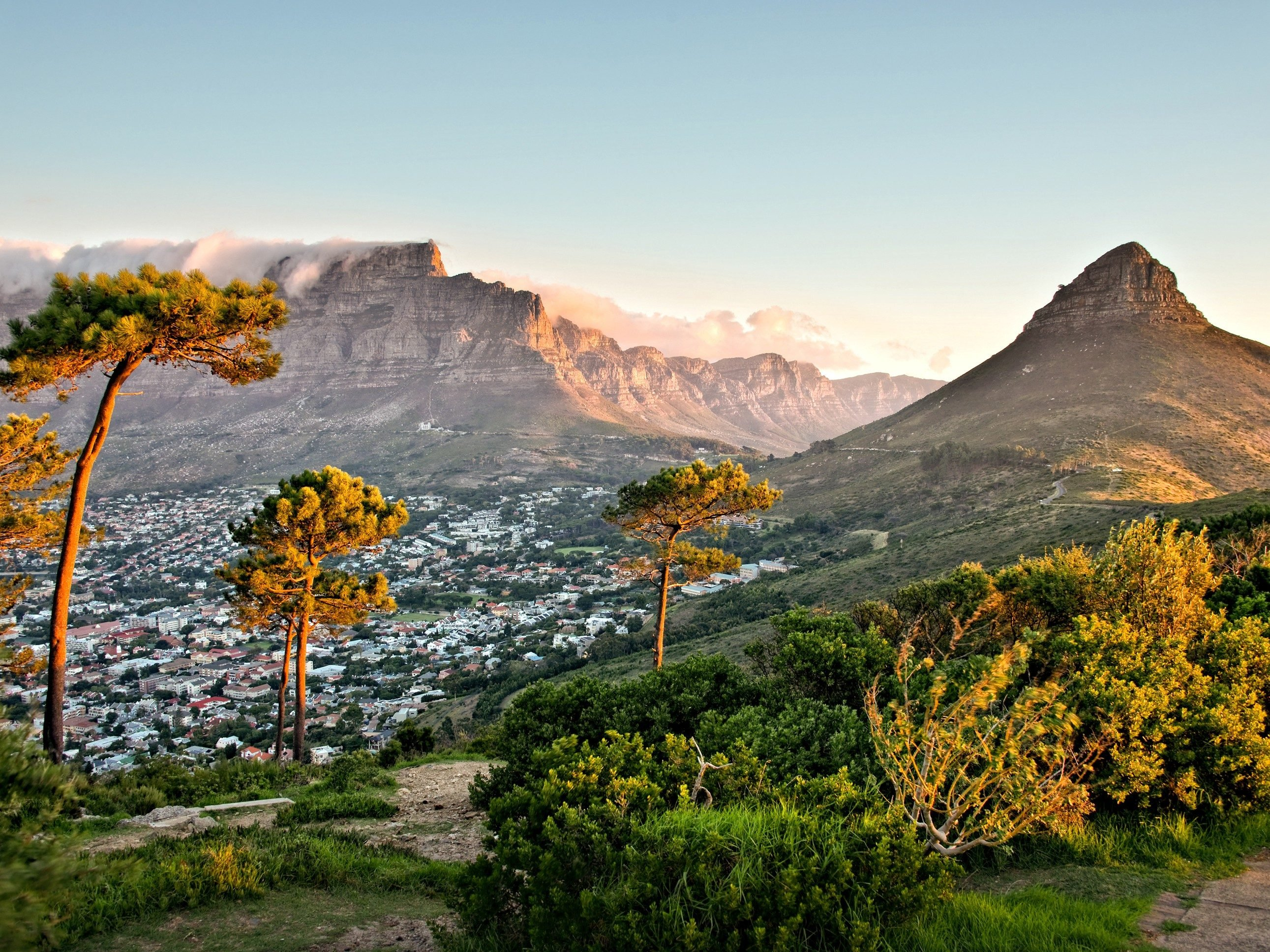 5. South Africa