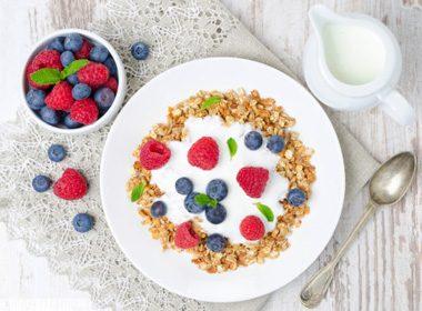 Yogurt and Muffin