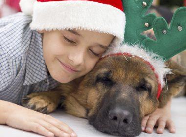 Watch Your Pet Around Kids