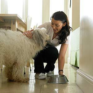 Preparing Your Pet's Meals is Better for Them