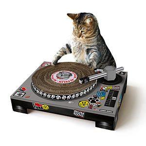 1. Cat DJ Scratching Deck
