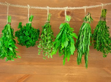 Snip on Fresh Herbs
